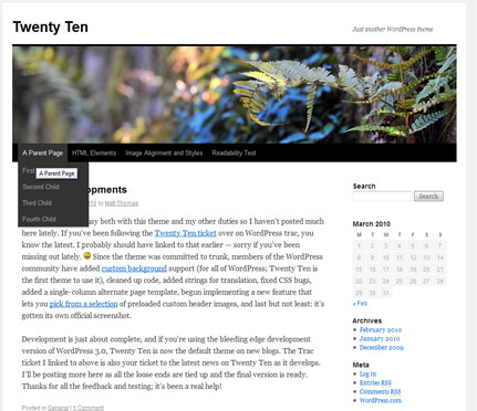 WordPress Theme 2010