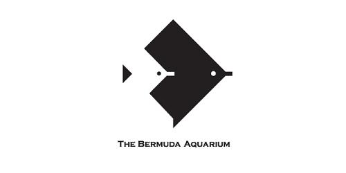 The Bermuda Aquarium